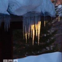 Winters deadly beauty 3.0