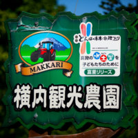 One of the many tourist attractions in the Niseko region.