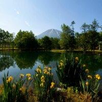 The calm beauty of a Niseko lake.